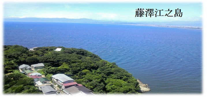 东京富士箱根伊豆河津樱藤泽江之岛五日豪华游